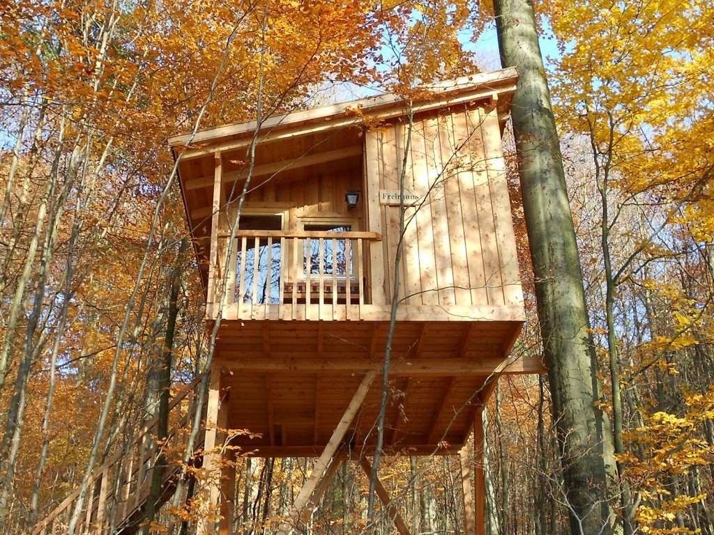 Tree house rentals in Uslar