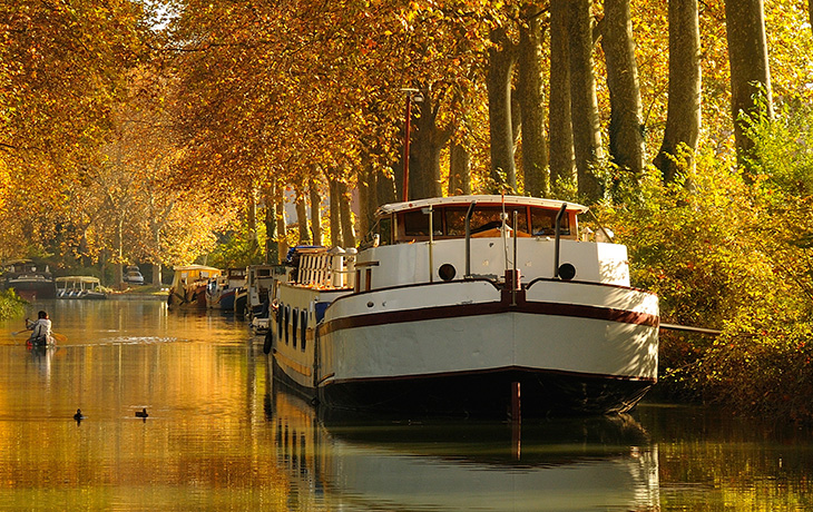 Book a river cruise
